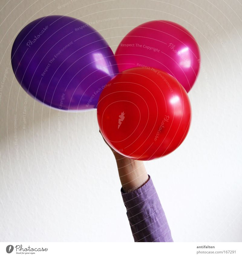 Human being Red Party Feasts & Celebrations Arm Pink Birthday Balloon Round Violet To hold on Jubilee Uphold
