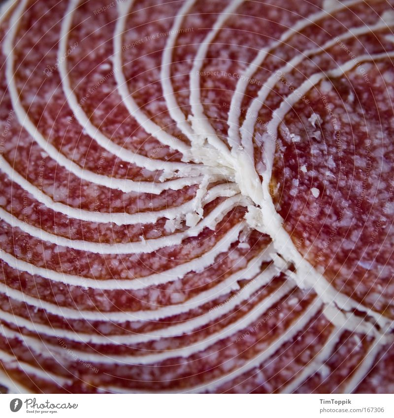 Great sausage #1 Macro (Extreme close-up) Deserted Bird's-eye view Food Meat Sausage Nutrition Fat Unhealthy Salami Spiral Winding staircase Carnivore Pork