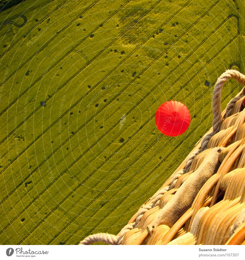 Fly over the Rapsfeld Colour photo Multicoloured Exterior shot Aerial photograph Pattern Structures and shapes Deserted Copy Space left Copy Space top Day