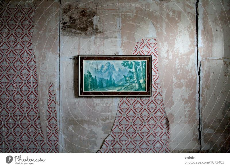 Capercaillie roar also Art Painting and drawing (object) Architecture Ruin Wall (barrier) Wall (building) Wallpaper Wallpaper pattern Wild animal Kitsch