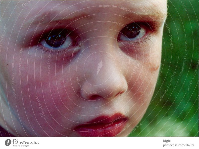 sorry Child Portrait photograph Human being Facial expression
