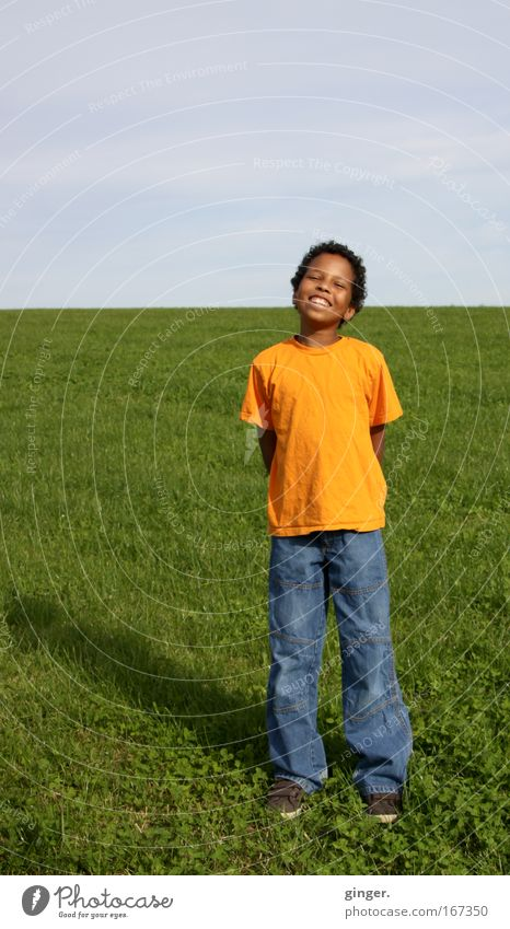 Human being Nature Plant Joy Far-off places Yellow Life Boy (child) Meadow Grass Spring Laughter Child Landscape Air