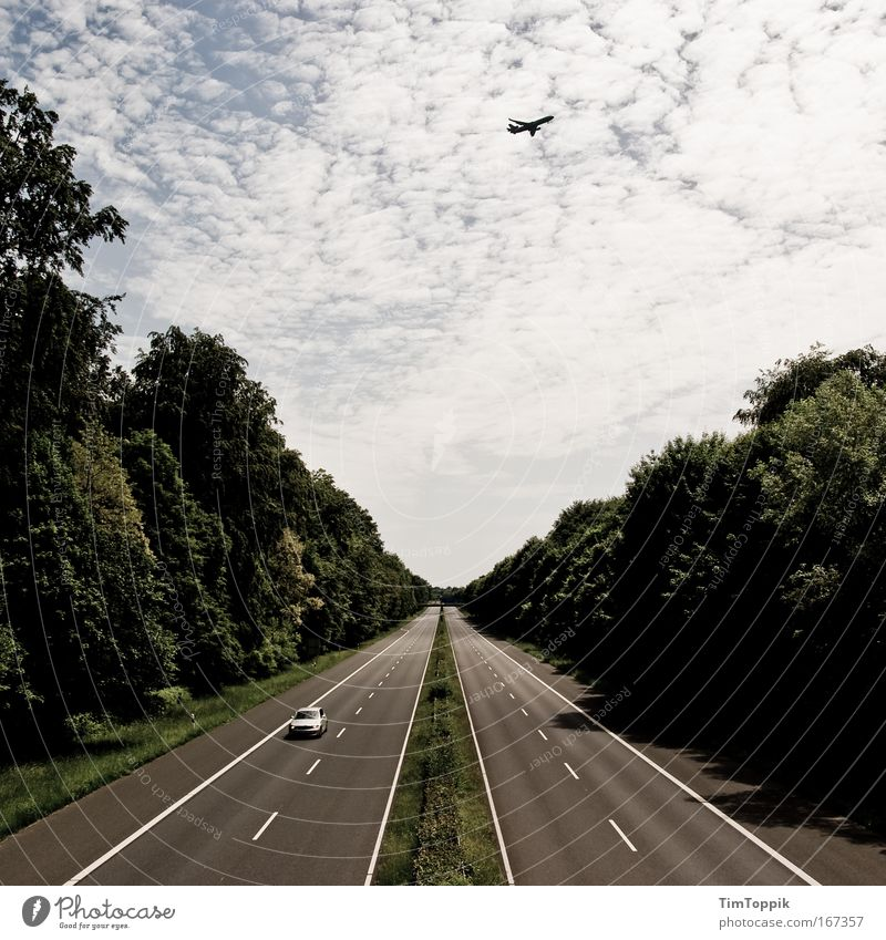Sky Vacation & Travel Loneliness Street Forest Car Airplane Road traffic Flying Horizon Driving Tourism Longing Highway Traffic infrastructure Motoring