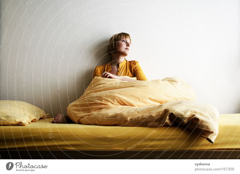 during Colour photo Interior shot Copy Space left Copy Space right Copy Space top Neutral Background Day Shadow Contrast Shallow depth of field