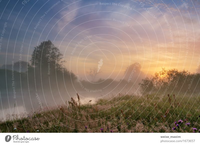 Misty morning on the river. Summer Beautiful Vacation & Travel Tourism Trip Adventure Freedom Camping Sun Environment Nature Landscape Plant Sky Clouds Sunrise