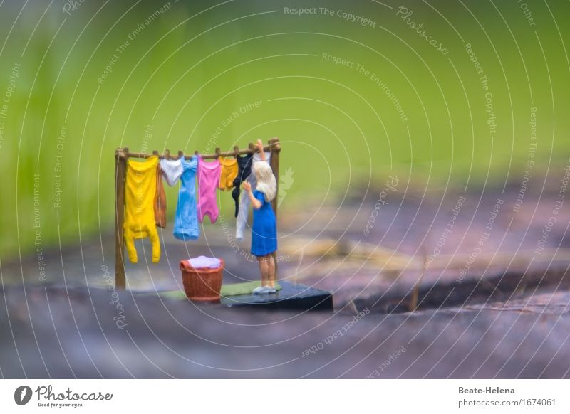 Woman Nature Blue Adults Yellow Garden Work and employment Pink Rain Park Living or residing Weather Fresh Clothing Clean Dress