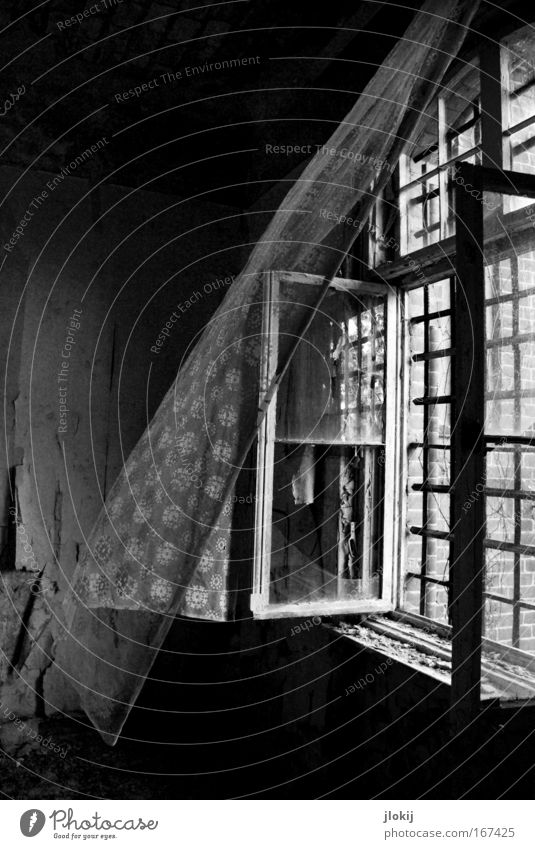 breath of life Black & white photo Interior shot Deserted Day Shadow Contrast Light (Natural Phenomenon) Sunlight House (Residential Structure) Industrial plant