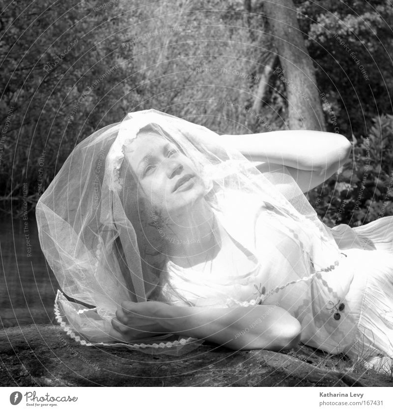 Bride of the forrest Black & white photo Exterior shot Structures and shapes Copy Space top Day Light Sunlight Central perspective Portrait photograph