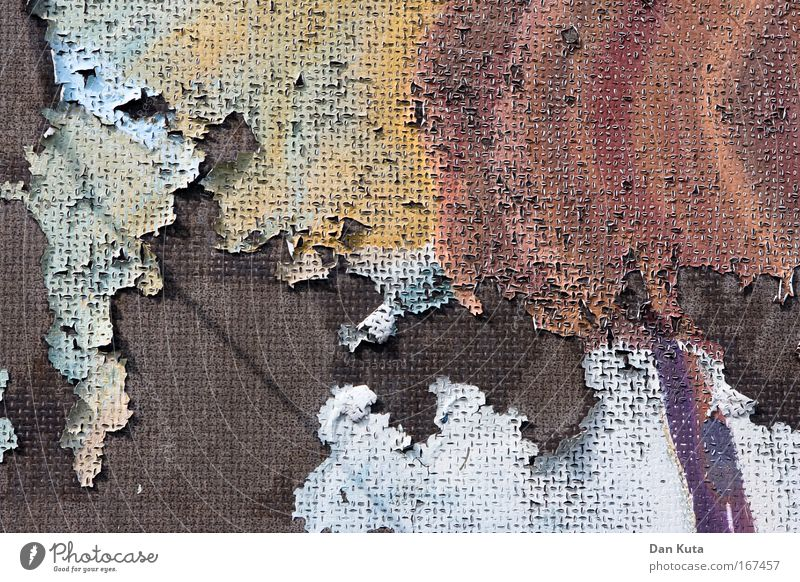 Beautiful skin appearance Colour photo Subdued colour Exterior shot Close-up Detail Experimental Abstract Structures and shapes Deserted Copy Space top Day