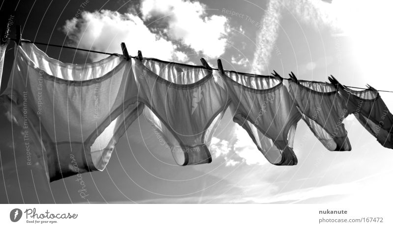 heavenly knickers XL Black & white photo Exterior shot Deserted Day Light Shadow Sunlight Sunbeam Back-light Front view Clouds Beautiful weather Clothing