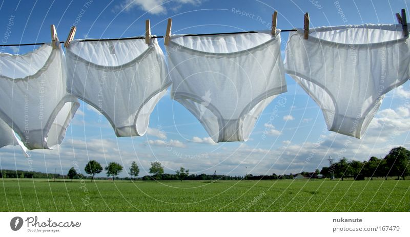 Washing day in the country Colour photo Exterior shot Deserted Day Sunlight Environment Nature Landscape Sky Clouds Summer Beautiful weather Tree Grass Meadow