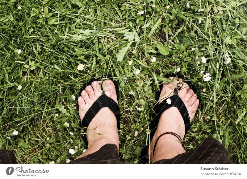Human being Plant Sun Summer Animal Leaf Landscape Meadow Feminine Warmth Garden Legs Feet Park Earth Skin