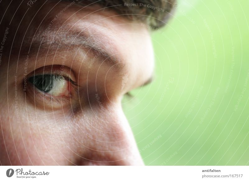 eye view Skin Face Masculine Man Adults Eyes Nose 1 Human being Observe Think Looking Natural Smart Green Curiosity Identity Colour photo Interior shot Close-up