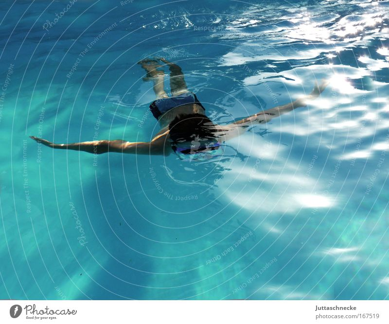 manta Underwater photo Day daylight Bird's-eye view Harmonious swimming pool bathe be afloat Summer vacation Aquatics Dive swimming pool  kid Boy (child)