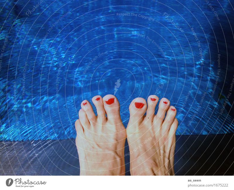 Vacation & Travel Blue Colour Summer Beautiful Water Relaxation Red Environment Warmth Swimming & Bathing Feet Weather Happiness Climate