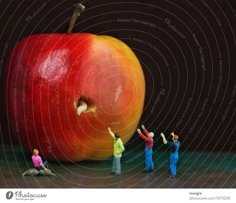 Human being Woman Man Red Adults Feminine Food Masculine Fruit Apple