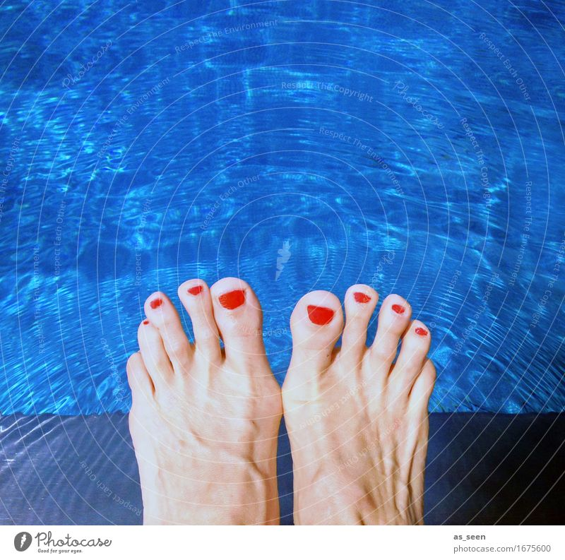 Cool at the pool Lifestyle Personal hygiene Pedicure Wellness Harmonious Relaxation Swimming pool Swimming & Bathing Summer Summer vacation Feet Toes Toenail