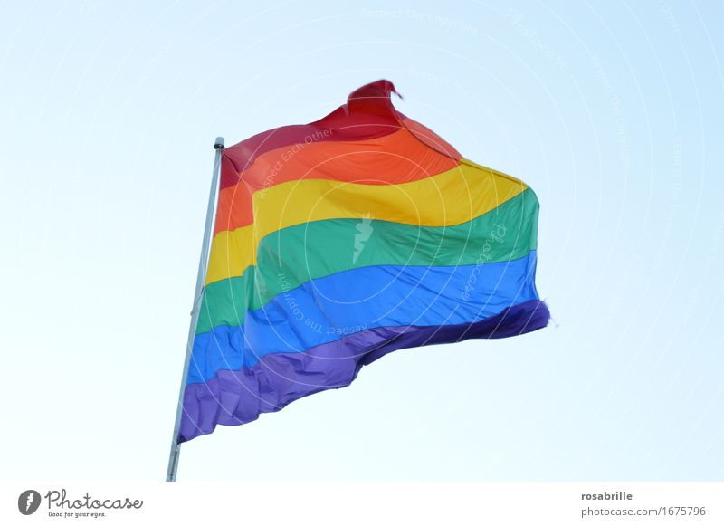 rainbow flag Homosexual Life Sign Flag Rainbow flag Happiness Blue Multicoloured Yellow Green Violet Orange Red Self-confident Acceptance Pride Freedom Love Sex