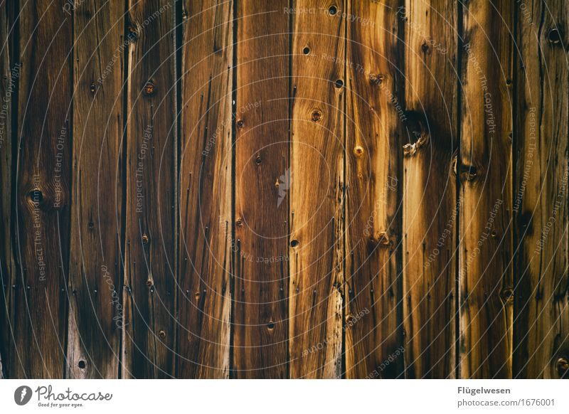 Wood background [3] Forest Logging trucks Wood effect Wooden board Wooden wall Wall (building) Parquet floor Floor covering Beech tree Oak tree Ash-tree Alder