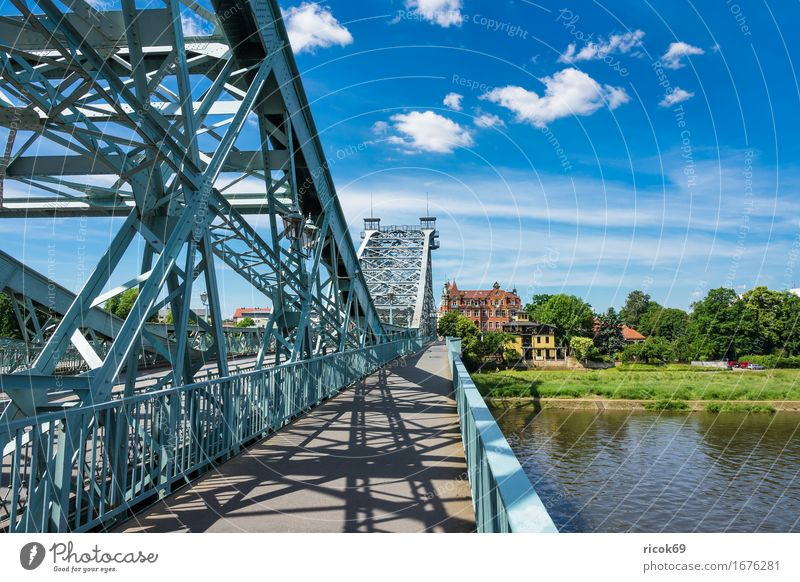 View over the Elbe to Loschwitz near Dresden Vacation & Travel Tourism House (Residential Structure) Clouds Tree Park River Capital city Bridge Building