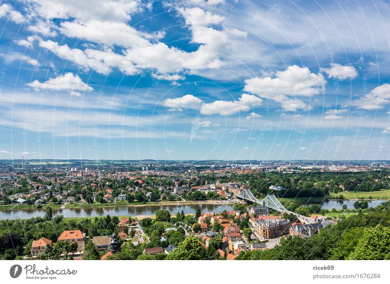 View over the Elbe to Dresden Vacation & Travel Tourism House (Residential Structure) Clouds Tree Park River Capital city Bridge Building Architecture