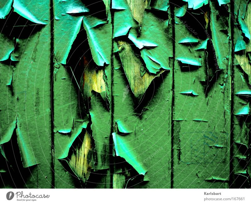 decay. and loss. Design Art Subculture Ruin Facade Varnish Wood Sign Ornament Line Old Esthetic Broken Crazy Trashy Green Aggression Chaos Apocalyptic sentiment
