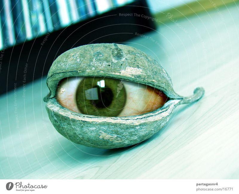 Eyes Obscure Husk