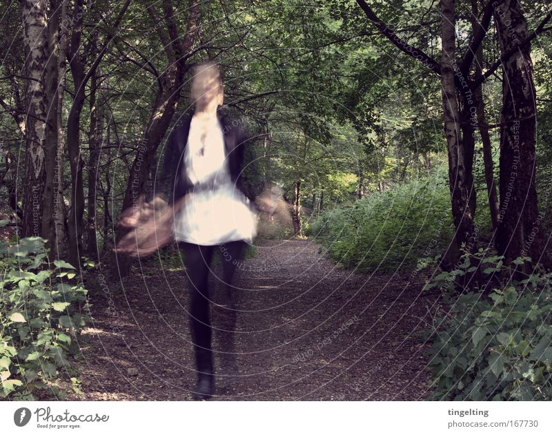 Human being Nature Green White Tree Leaf Black Forest Feminine Jump Dream Earth Going Walking Bushes Footpath