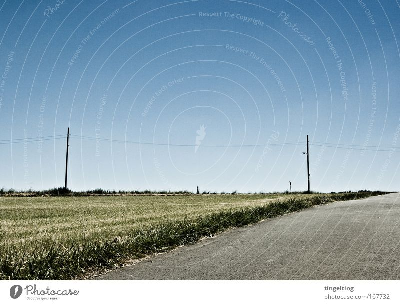 On the horizon Colour photo Subdued colour Exterior shot Copy Space top Day Nature Landscape Cloudless sky Horizon Field Traffic infrastructure Lanes & trails