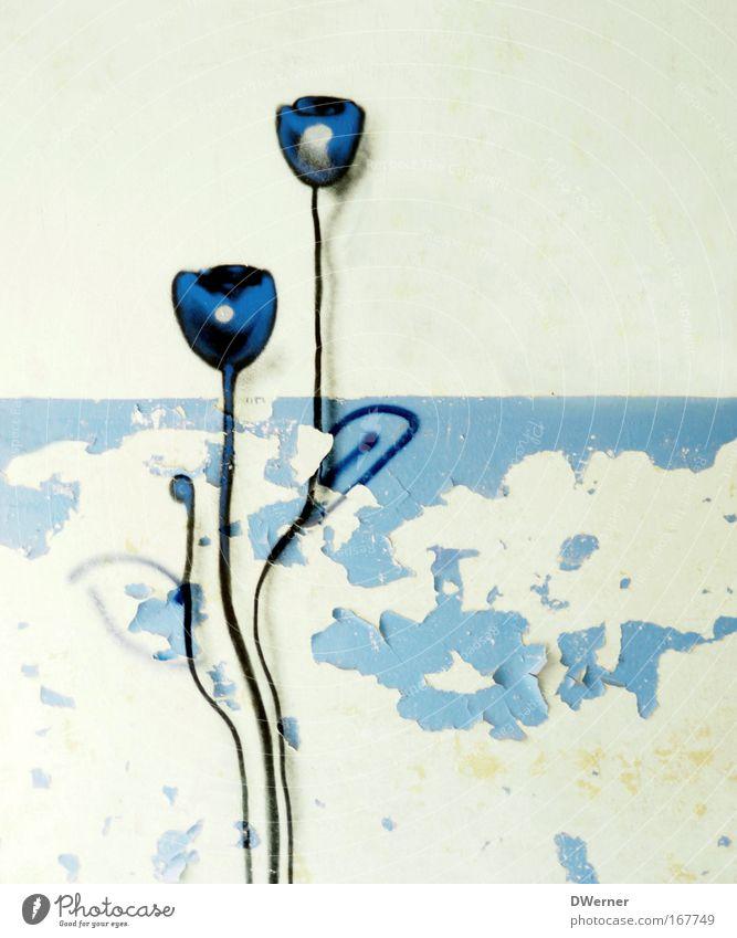 Nature Beautiful Flower Plant Calm Relaxation Stone Landscape Graffiti Power Art Hope Growth Gloomy Stand Decoration