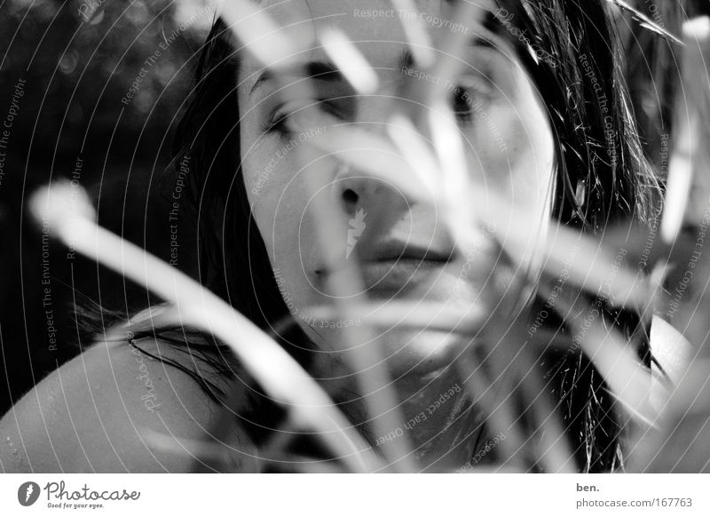 lavender Black & white photo Exterior shot Blur Looking into the camera Exotic Face Harmonious Senses Fragrance Human being Young woman Youth (Young adults)