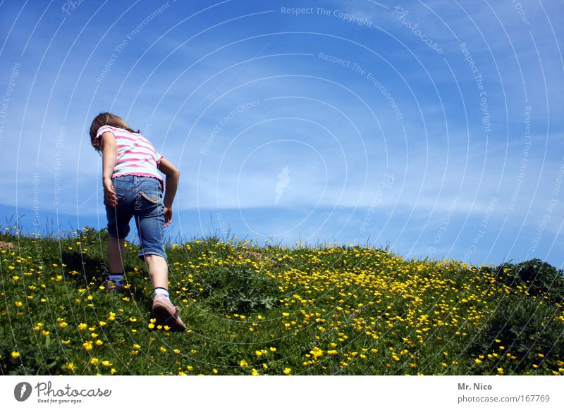 Sky Nature Blue Green Girl Summer Mountain Above Freedom Contentment Back Leisure and hobbies Hiking Trip Climbing Hill