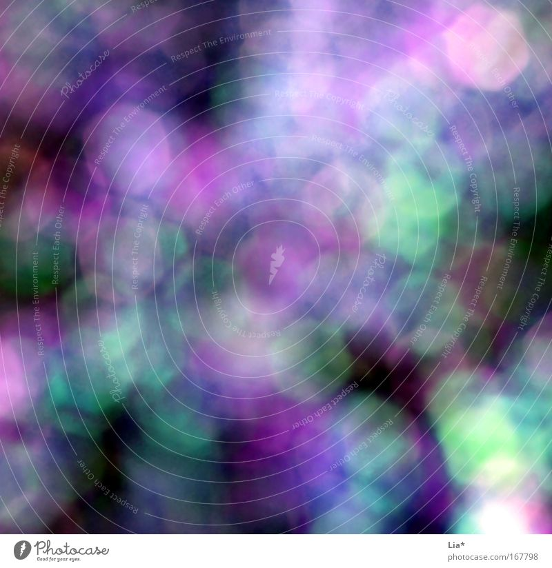 Summer Sadness Playing Dream Violet Patch Intoxication Magic Mystic Dazzle Pattern Lens flare Aperture Glare effect Drugs rush Reflection