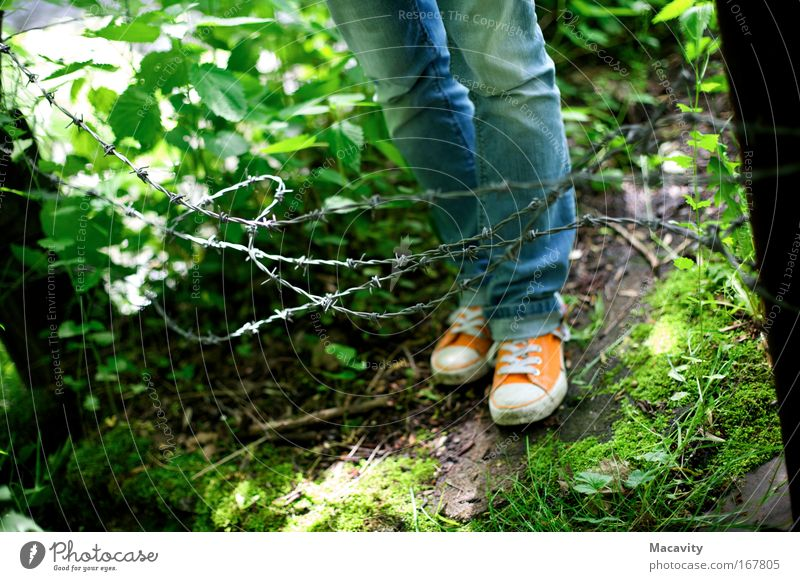 enclosure Colour photo Subdued colour Exterior shot Copy Space left Copy Space bottom Day Sunlight Shallow depth of field Legs Feet Nature Plant Grass Jeans