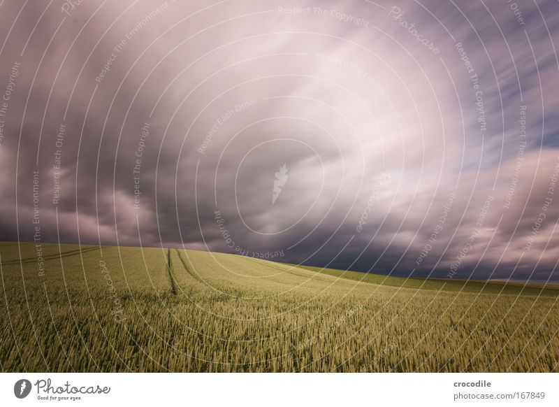 Nature Sky Green Plant Summer Clouds Gray Landscape Moody Field Wind Weather Environment Speed Esthetic Future