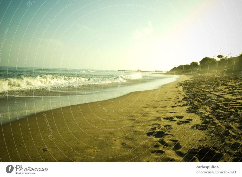 Subdued colour Exterior shot Deserted Tourism Trip Sun Beach Waves Coast Ocean Sand Vacation & Travel Marbella Spain Andalucia