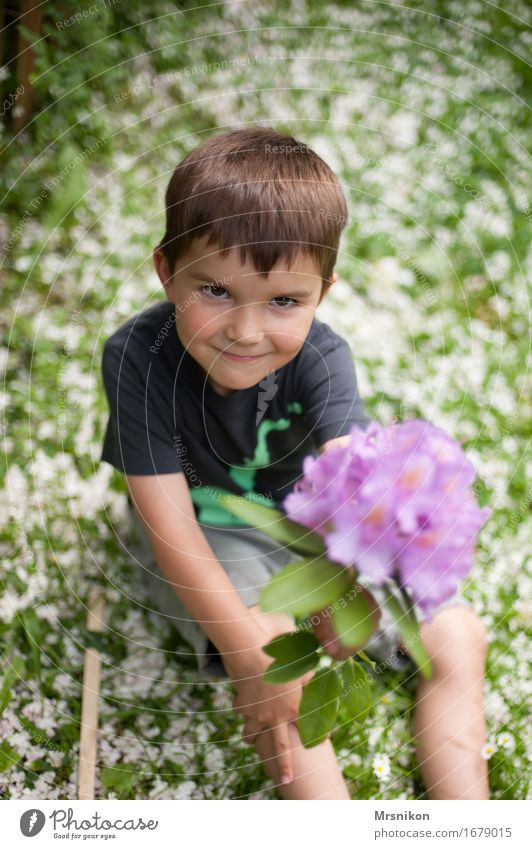 blossoms Child Toddler Boy (child) Brother Infancy 1 Human being 3 - 8 years Nature Spring Blossom Joy Happy Happiness Warm-heartedness Sympathy Friendship