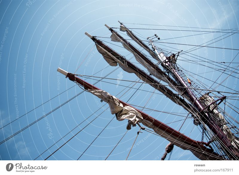 tall ships! Colour photo Day Navigation Cruise Boating trip Passenger ship Cruise liner Sailing ship Watercraft Adventure Sailing vacation Mast Rigging Sky