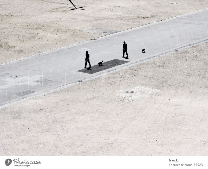 2 x 2 Colour photo Exterior shot Copy Space bottom Contrast Silhouette Deep depth of field Bird's-eye view Full-length Human being Masculine Man Adults Couple