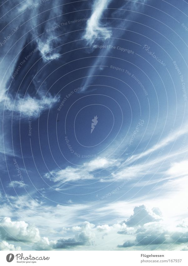 Sky Summer Clouds Relaxation Dream Contentment Weather Environment Search Free Horizon Cool (slang) Climate Joie de vivre (Vitality) Universe Friendliness