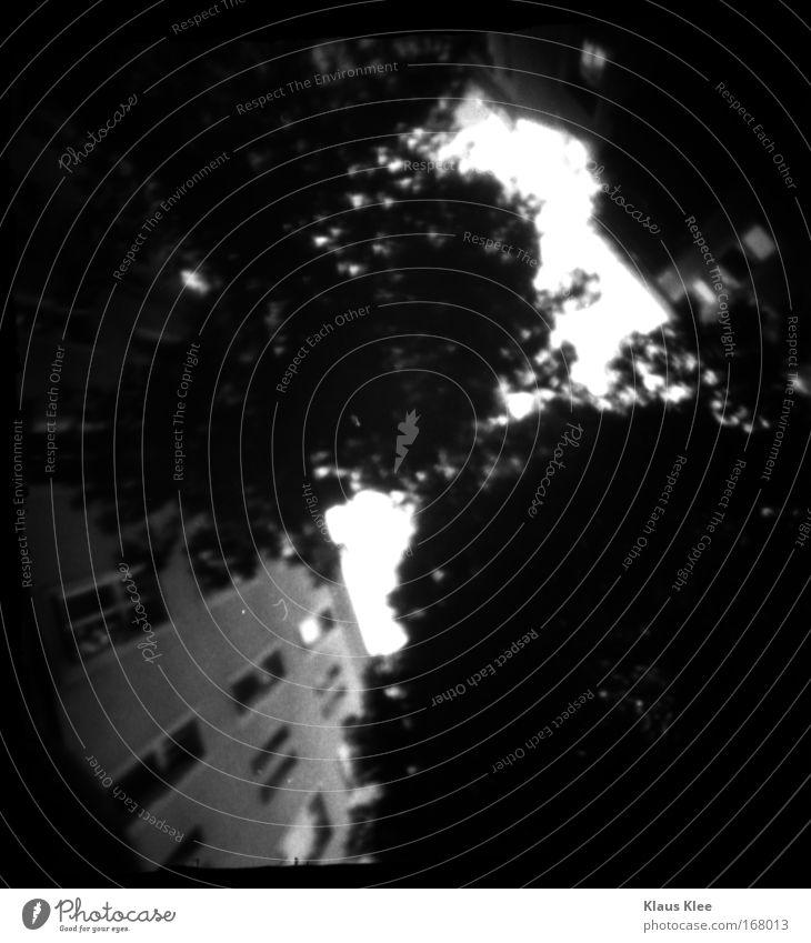 THE NOISE GOES AROUND :::: Black & white photo Wind Gale Rain Thunder and lightning Backyard Courtyard Calm Curiosity Belief Humble Boredom Dream Death
