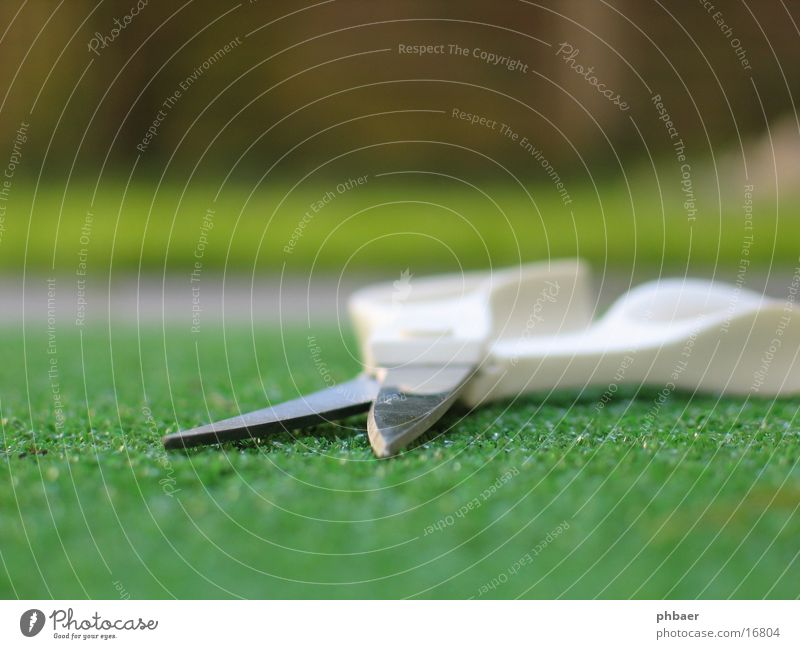 White Green Grass Corner Open Things Depth of field Door handle Scissors Cut Haircut Artificial lawn Blade