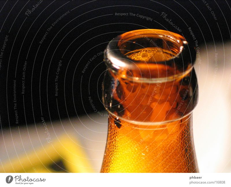 Water Brown Glass Search Drinking Beer Alcohol-fueled Bottle Alcoholic drinks Foam Thirst Wheat Recycling Neck of a bottle Grain Hop