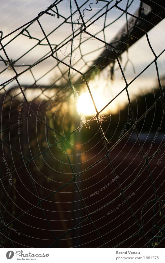 School sports Ball sports Sporting Complex Football pitch Beautiful Warmth Calm Net Goal Old Broken Sky linkage Colour photo Exterior shot Detail Deserted