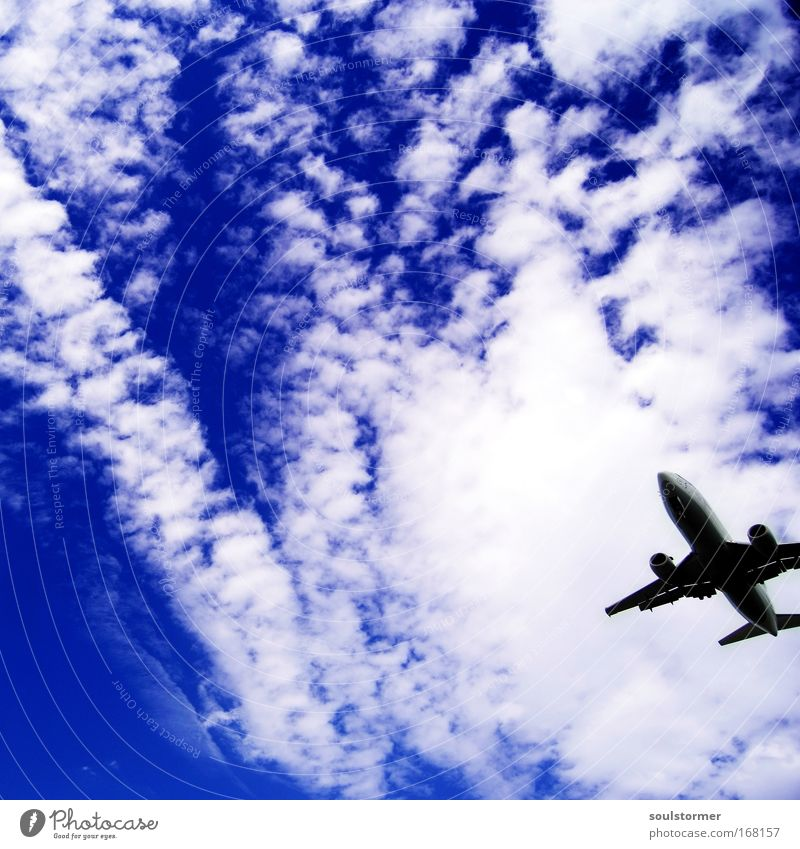 Sky White Blue Summer Beach Vacation & Travel Calm Clouds Relaxation Airplane Large Free Lifestyle Aviation Island Tourism
