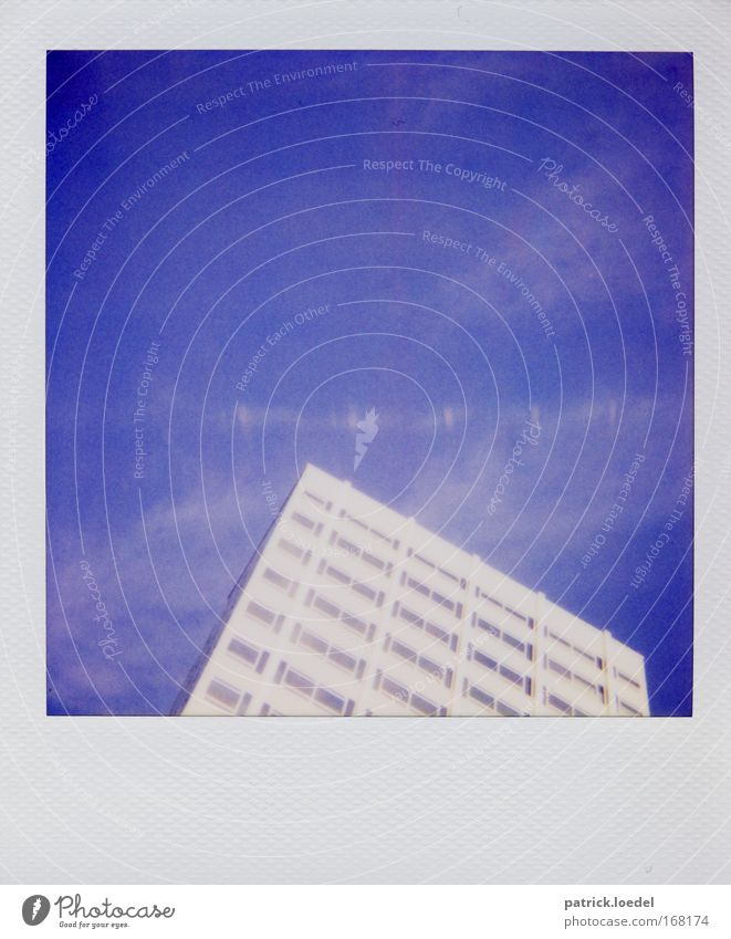 Sky high Colour photo Exterior shot Polaroid Copy Space bottom Day Contrast High-key Blur Worm's-eye view House (Residential Structure) High-rise Bank building