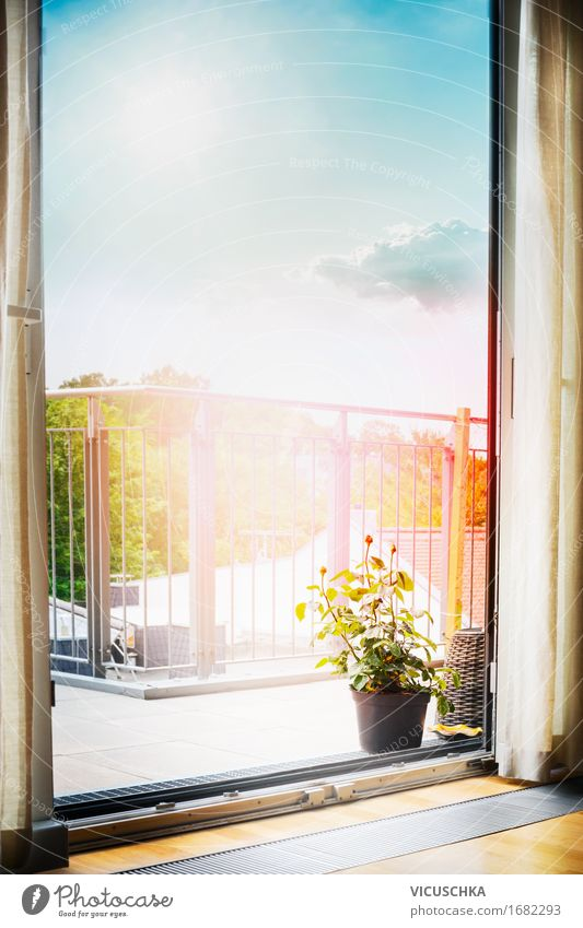 Sky Nature City Summer Green Sun House (Residential Structure) Style Lifestyle Design Flat (apartment) Room Living or residing Vantage point Beautiful weather Balcony