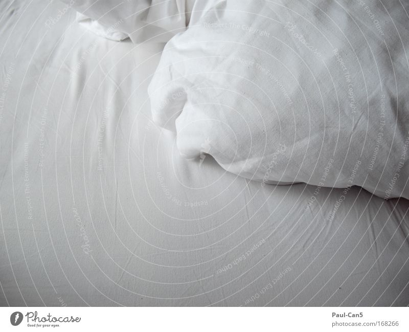 pillow talk Colour photo Interior shot Detail Deserted Copy Space left Copy Space bottom Neutral Background Dawn Happy Harmonious Well-being Contentment Senses