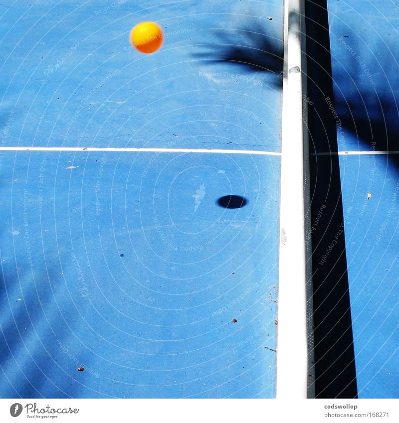 Blue Sports Playing Line Flying Ball Sporting event Table tennis Table tennis table Table tennis ball