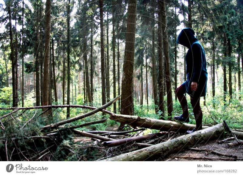 Nature Tree Loneliness Forest Feminine Contentment Time Peace Discover Cap Tree trunk Coat Mythical creature Mystic Fairy tale Hooded (clothing)
